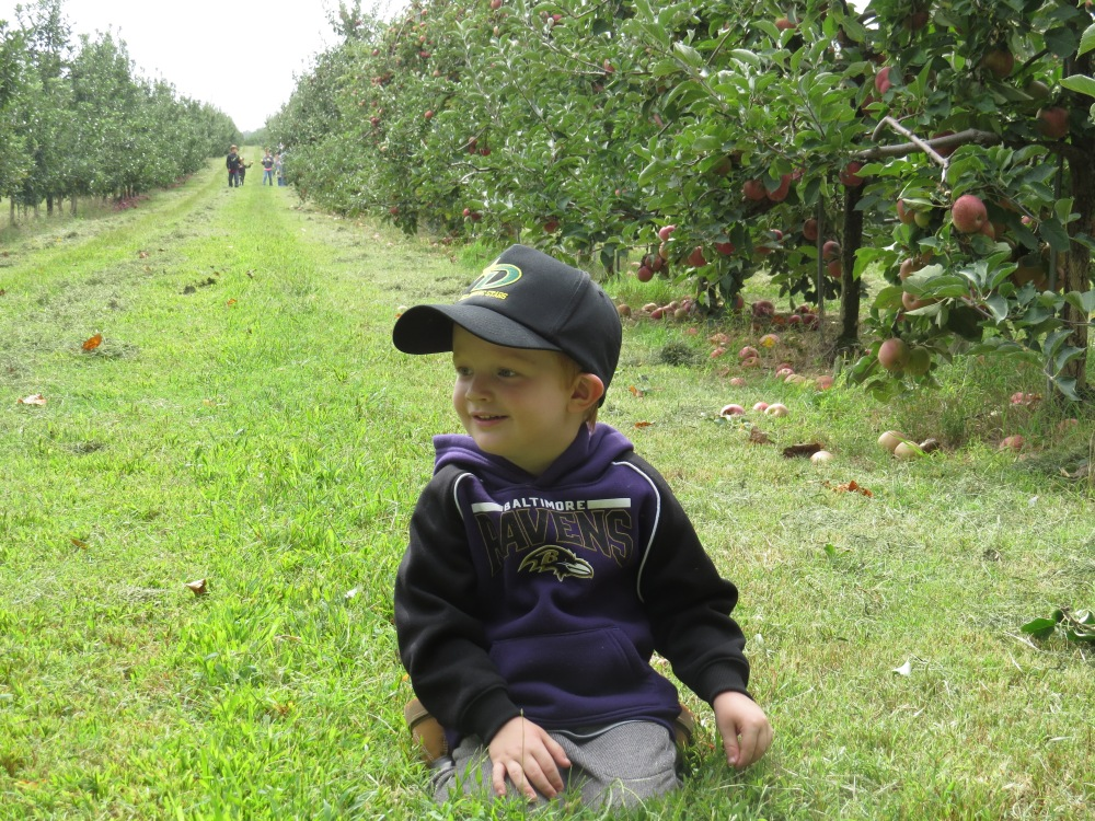 In the orchard :)